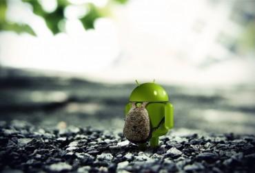 Android ice Cream SandwichWallpaper - 1920x1200( www.hqwallpaperslk.blogspot.com )